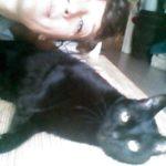 Dedzu, un vieux petit chat tranquillement joueur